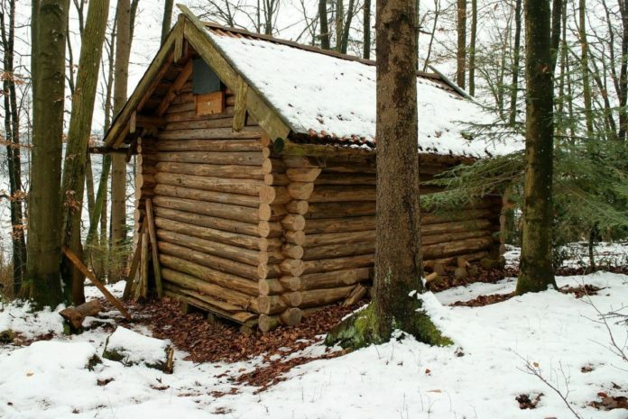Pre Built Log Cabin for Under 10,000 Dollars