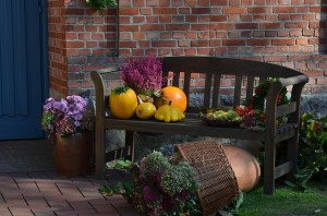 Simple Decorating Ideas for Thanksgiving